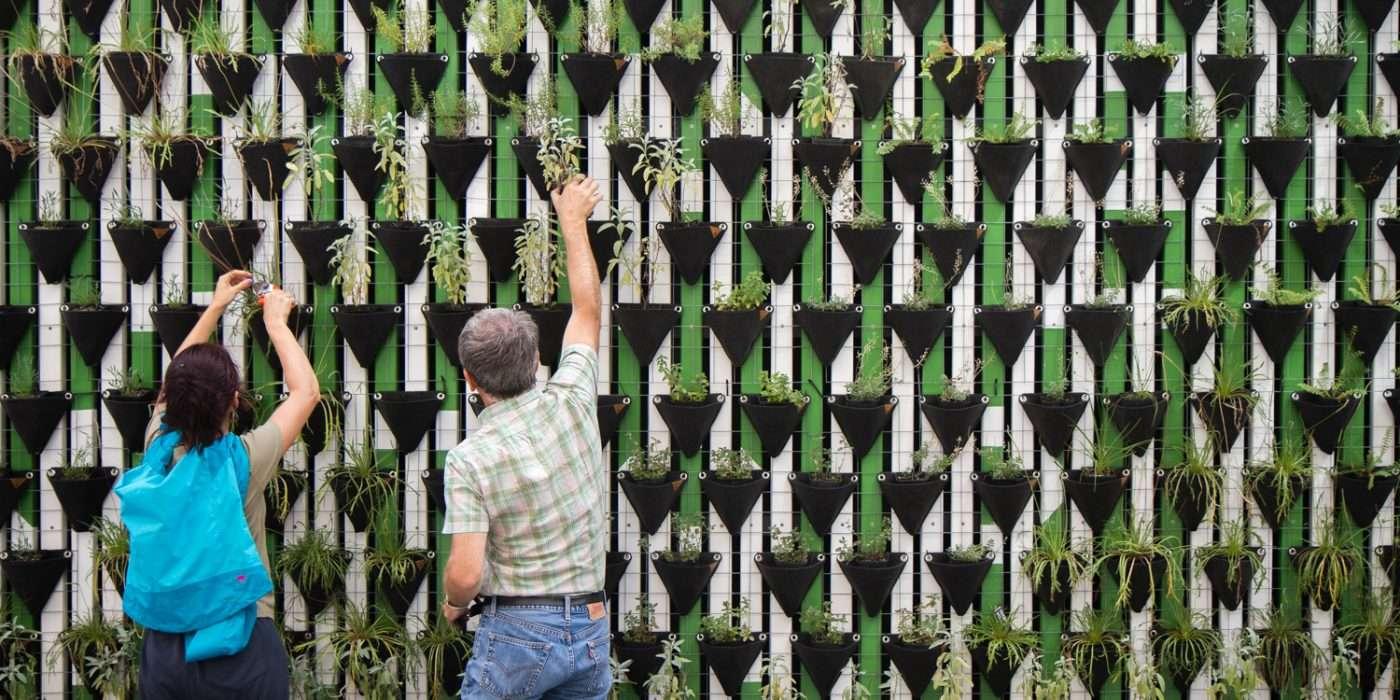Man and women adding plants to a vertical garden
